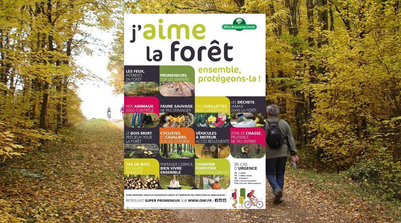 La randonnée, une des activités pratiquées en forêt
