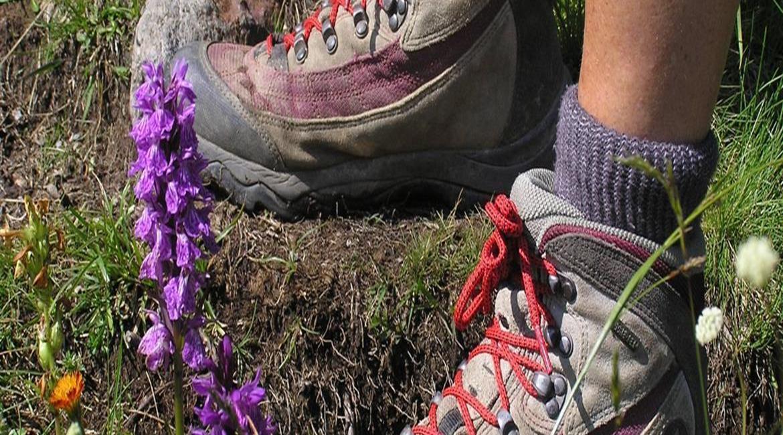 Bien entretenir les chaussures de randonnée